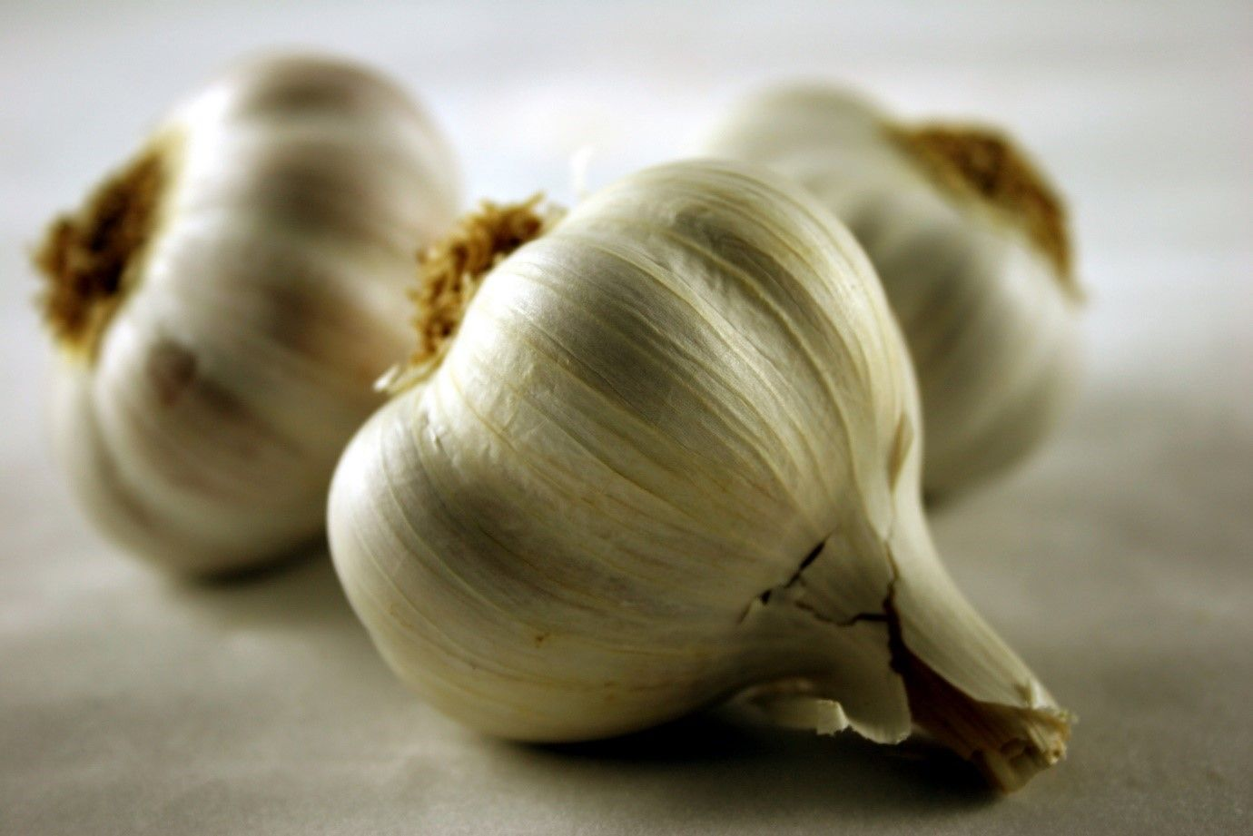 Facts About Garlic