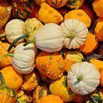 The benefits of pumpkin and its depurative properties