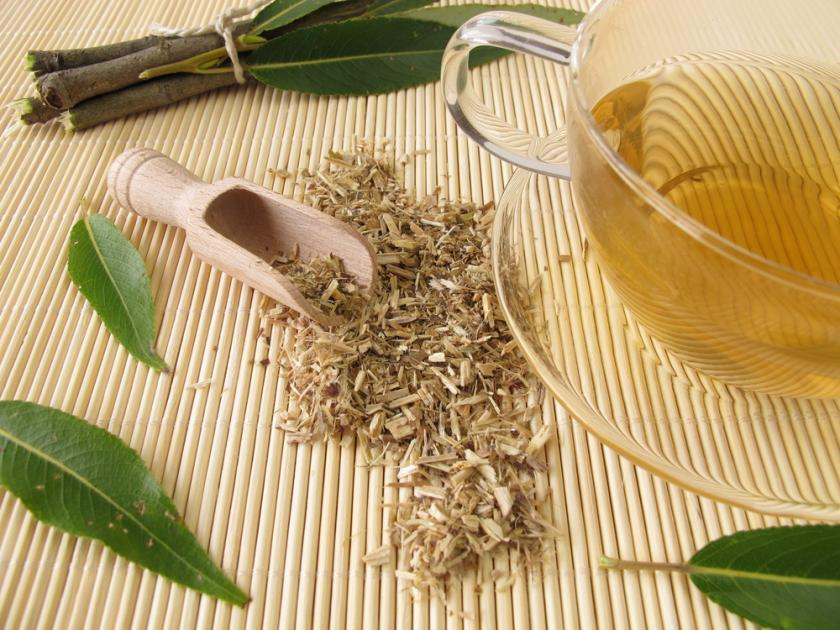 Tea of willow bark