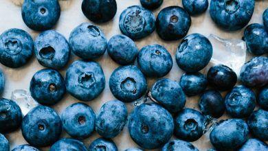 How to frozen blueberries